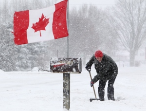 A man shovels a driveway as the wind whips a Canadian flag during a winter snow storm in Newbury, Ont., Friday, Feb. 8, 2013. (Dave Chidley / THE CANADIAN PRESS)