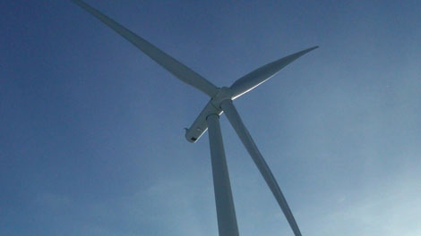 Manitoba's $345 million wind farm began production near St. Paul, 100 kilometres south of Winnipeg, on Tuesday.  It will eventually produce enough energy to power 50,000 homes.