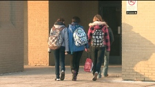 TDSB wants more mental health support for students