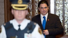 Brazeau senate out