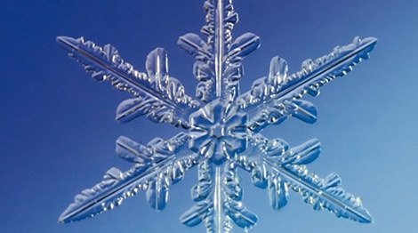 You're no snowflake, according to a new study.