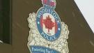 Woodstock Police generic