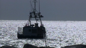 A fishing boat floats off the coast of Woods Harbour, N.S. on Thursday, Feb. 21, 2013.