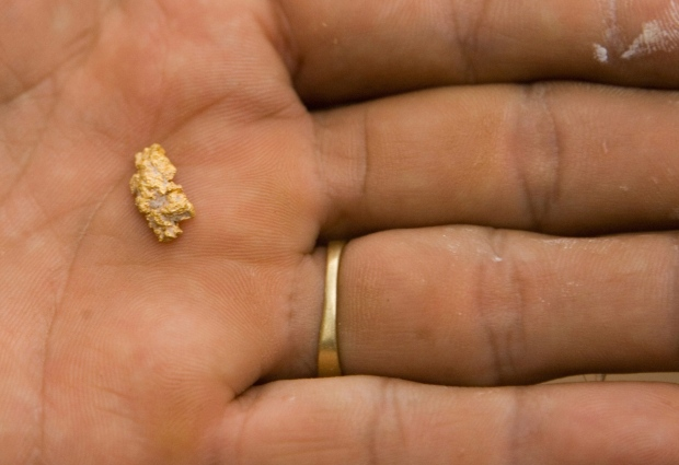 Feb. 1, 2007 file photo of a gold nugget.