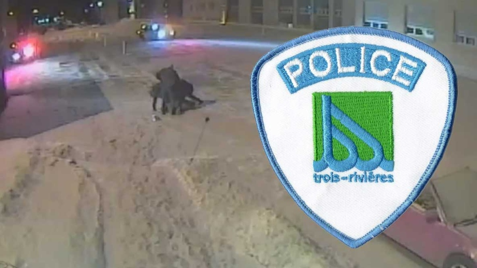 Four officers from the Trois Rivieres police were suspended after a brutal arrest was caught on tape. (Badge image courtesy of Dave Conner)
