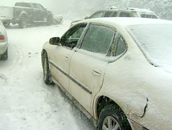Dozens of vehicles are involved crash on Highway 11 between Barrie and Orillia, Friday, Jan. 21, 2011.