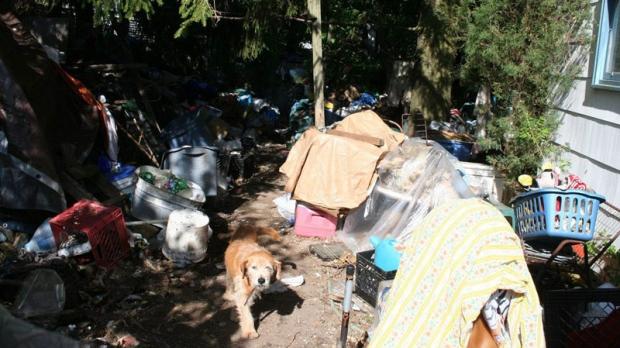 A dog wanders in the junk-filled back yard of a house on May 13, 2008, in Oneida, Pa. (AP / Hazleton Standard-Speaker, Jamie Pesotine)