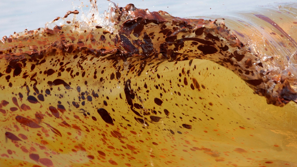 Crude oil from the Deepwater Horizon oil spill washes ashore in Orange Beach, Ala., in this June 12, 2010 file photo. (AP Photo/Dave Martin, File)
