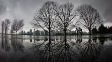 Cyclists ride through Stanley Park as rain falls in Vancouver, B.C. THE CANADIAN PRESS/Darryl Dyck