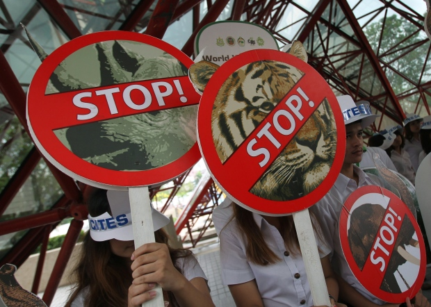UN calls for clamp down on illegal wildlife trade
