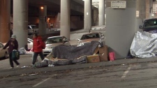 Seattle's take on solving homelessness could work in Vancouver. Jan. 26, 2011. (CTV)