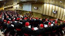 Cardinals seek answers over Vatican scandals