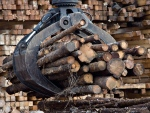 Workers pile logs at a softwood lumber sawmill in Saguenay, Que., in this 2008 file photo. (Jacques Boissinot/THE CANADIAN PRESS)