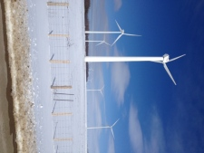 Wind farm near Kincardine, Ont.