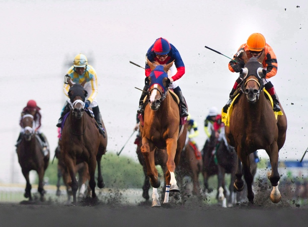 horse racing, tracks, ontario