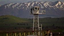 UN peacekeepers released from Syria