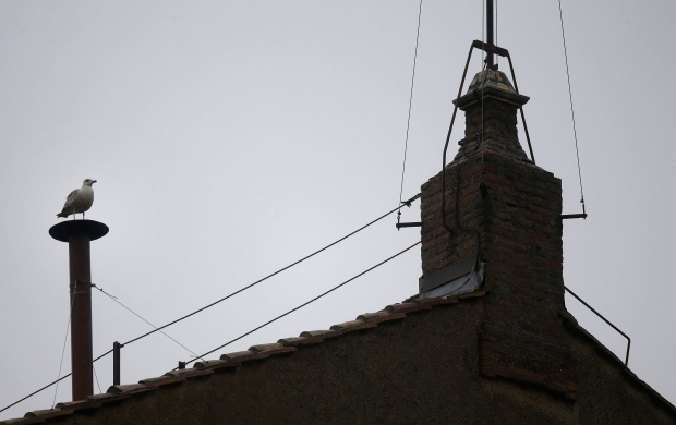 Seagull atop Sistine Chapel chimney conclave