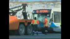 Bus crash Guelph