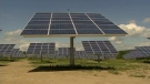 Would you want a solar energy farm as a neighbour?