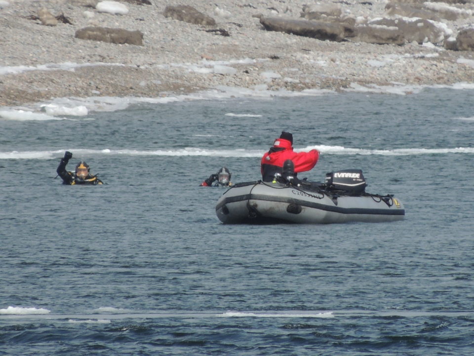 Divers search for a car that drove off a ferry and plunged into a bay in Cape Breton, March 26, 2013. (MyNews.CTVNews.ca)