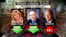 Senator expenses newly released