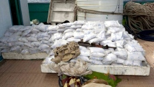 Canadian ship makes major drug bust