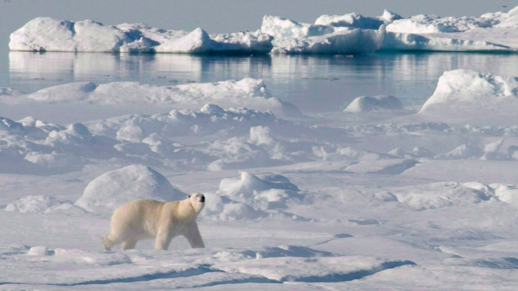 Canada praised for its stance on Arctic pollution