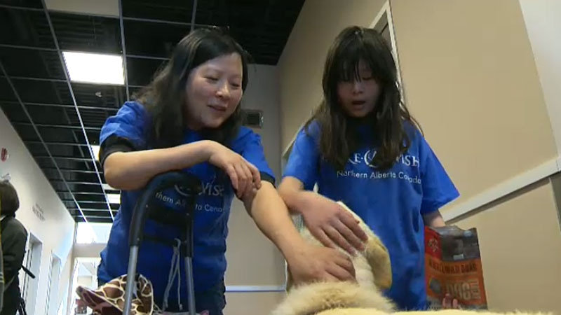 Twelve-year-old Sidney was given the chance to have a wish granted by the Make-a-Wish Foundation. Instead of using it to help herself, Sidney chose to help animals at the Edmonton Humane Society.