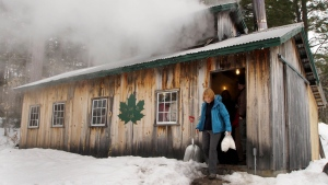Gov. Maggie Hassan, D-N.H., leaves the Tucker Mountain sugar house after meeting with local producers of maple syrup, Monday, March 4, 2013, in Andover, N.H. (AP / Jim Cole)