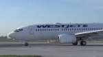 A WestJet plane is seen in this undated image.