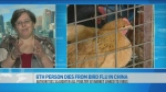 CTV News Channel: 'Early stages' of bird flu
