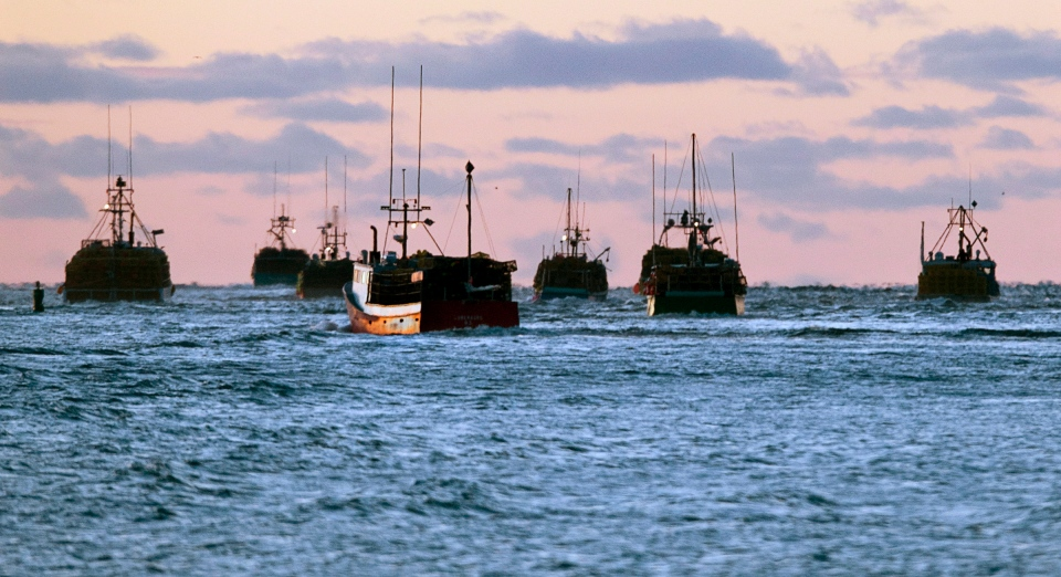 Fishing boats are shown off the coast of Nova Scotia in this 2012 file photo. (Andrew Vaughan / THE CANADIAN PRESS)