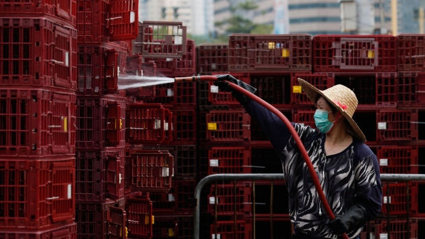 Death toll from bird flu rising in Asia