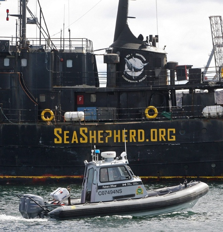 A Canadian Fisheries and Oceans patrol boat passes by the Sea Shepherd Conservation Society vessel Farley Mowat in Sydney, N.S. on Monday, April 14, 2008. (Mike Dembeck / THE CANADIAN PRESS)