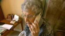 telephone scam, grandparent scam
