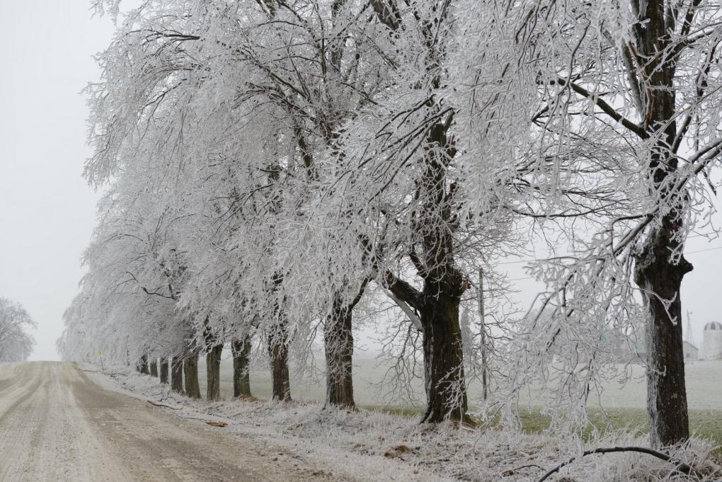 Spring Storm Hits Southern Ontario Ctv News Toronto