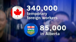 CTV National News: Demand for foreign workers