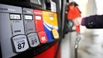 A motorist reaches for the pump at a gas station in Toronto on Thursday, Feb. 24, 2011. (Patrick Dell / THE CANADIAN PRESS)