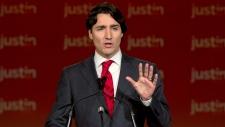 Key glimpses of next Liberal platform