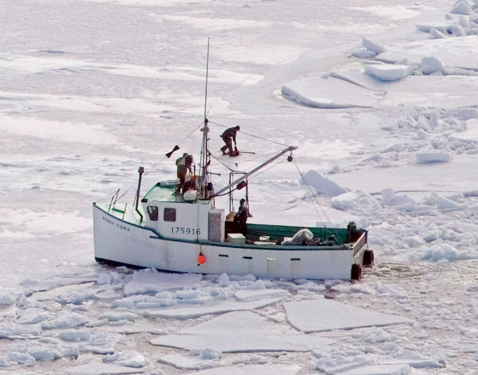 Hunters kill a harp seal during the annual East Coast seal hunt in the southern Gulf of St. Lawrence around Quebec's Iles de la Madeleine in this 2009 file photo. (Andrew Vaughan / THE CANADIAN PRESS)