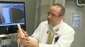 Shin bone, live cartilage and meniscus transplant