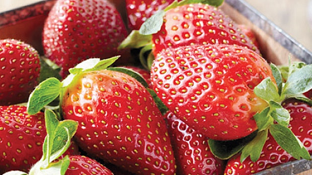 Boy arrested over berry sabotage