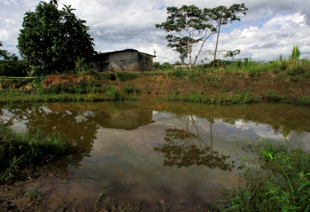 Ecuador oil contamination Chevron Corp.