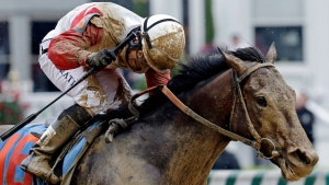 Fans wear fancy hats, spectators make wages and horses race through the mud during the 139th Kentucky Derby in Louisville.<br><br>