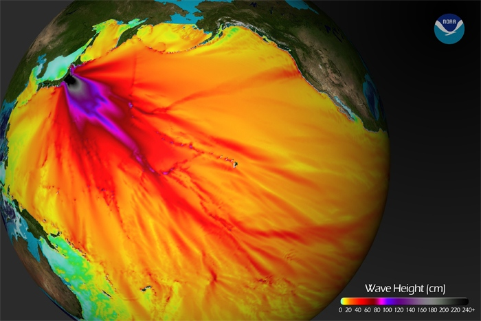 NOAA graphic displays estimates of how far and how high the tsunami waves travelled.