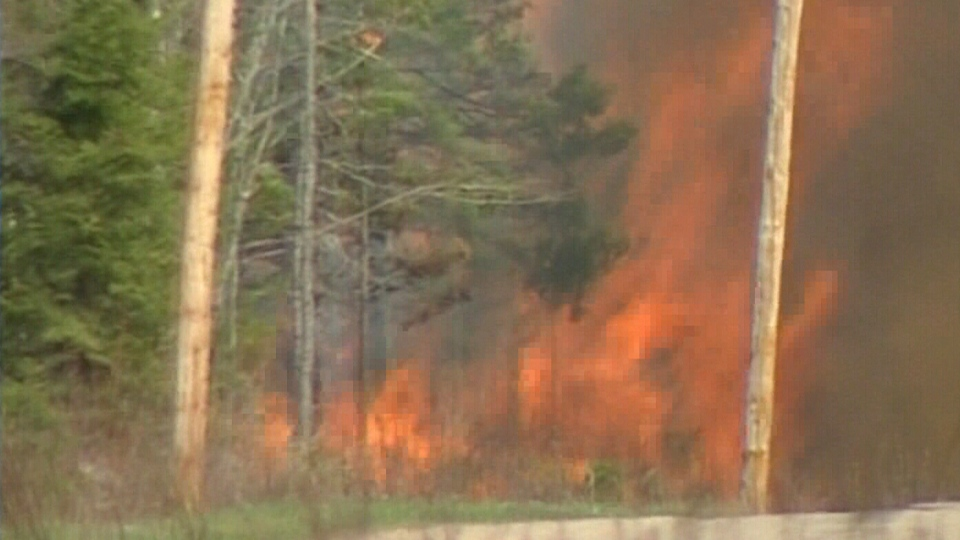A forest fire rages 35 kilometres southwest of Moncton, N.B., Wednesday, May 8, 2013.