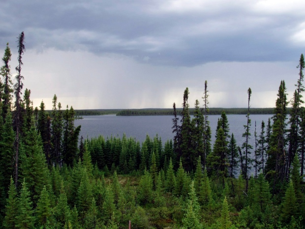 Undated photo of boreal forest in central Quebec.