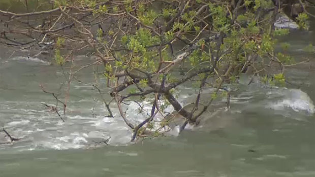 The rain in Calgary is expected to wrap up sometime this weekend, but the CFD is advising against all activity on the Elbow and Bow Rivers until they give the all clear.
