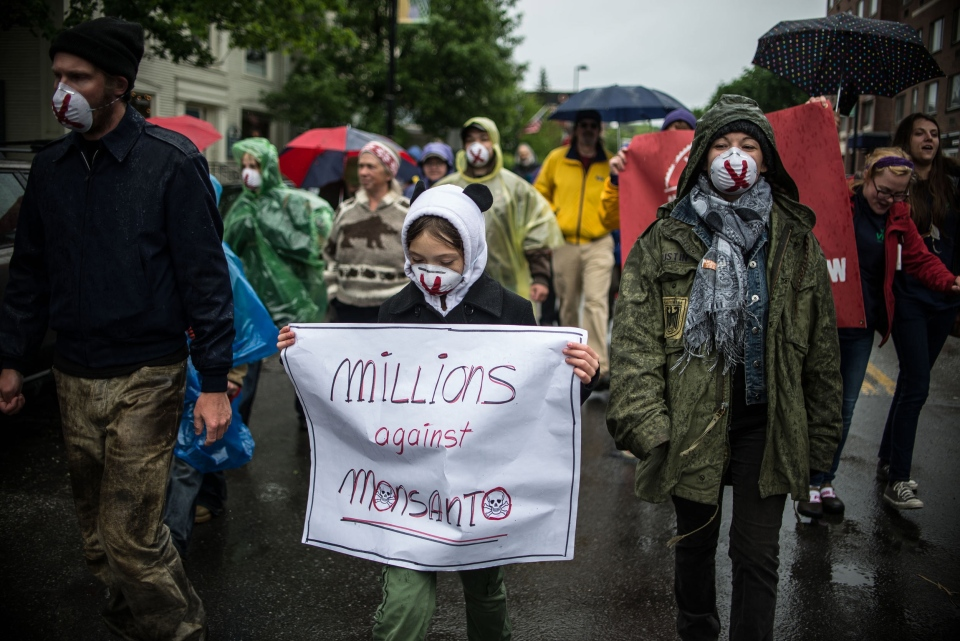 People carry signs during a protest against Monsanto in Montpelier, Vt. on Saturday, May 25, 2013.  (AP / Mark Collier)