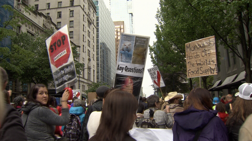 People march down Georgia Street in Vancouver to speak out against genetically modified foods on Saturday, May 25, 2013, joining a worldwide day of protests. (CTV)